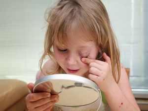 Сыпь и насморк у ребенка